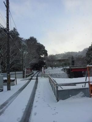 雪が・・・降った積もったけど雪もいいさとウォーキングで職場まで!